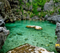 Tangke Lagoon, Islas de Gigantes | Carles (c) 2014 | Remo Aguilar | All Rights Reserved