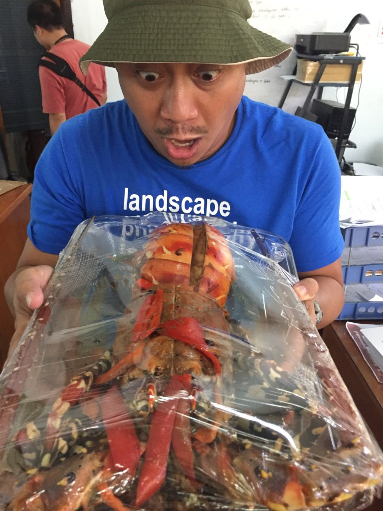 "Lobster or ""ulang"" a deep see creature on a menu"